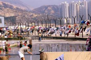 Hongkong cam
